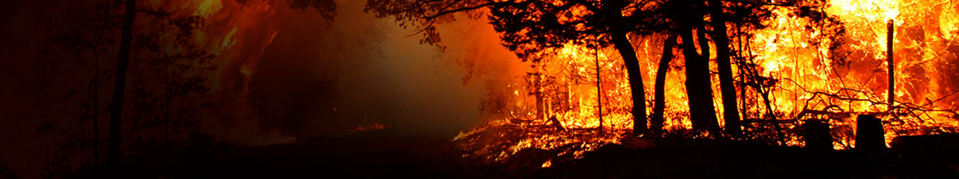 Record Wildfires, Unprecedented Public Works Response